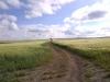 Blackfeet-20120716-00228