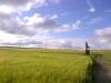 Blackfeet-20120716-00236